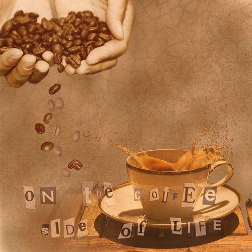 Le café - Page 2 3d83f669