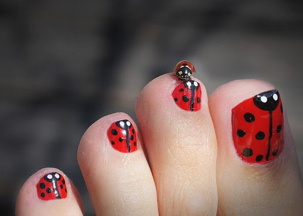 Coccinelle sur ongles pieds coxi