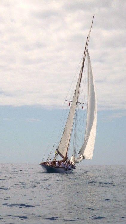 68a1966e