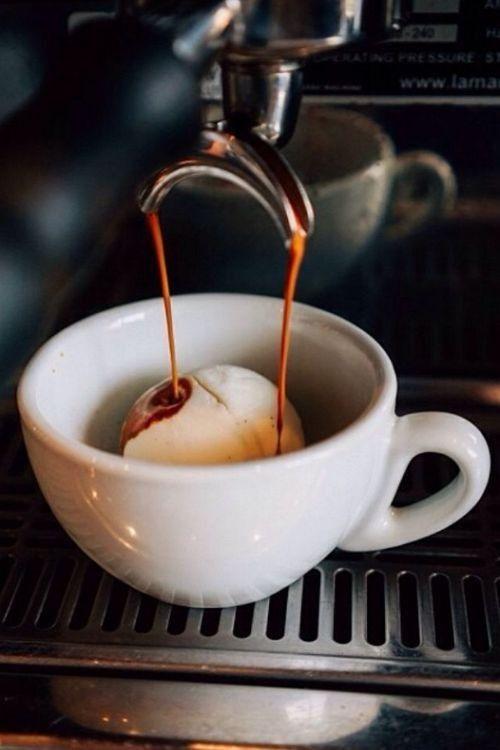 Le café - Page 2 A11612e1